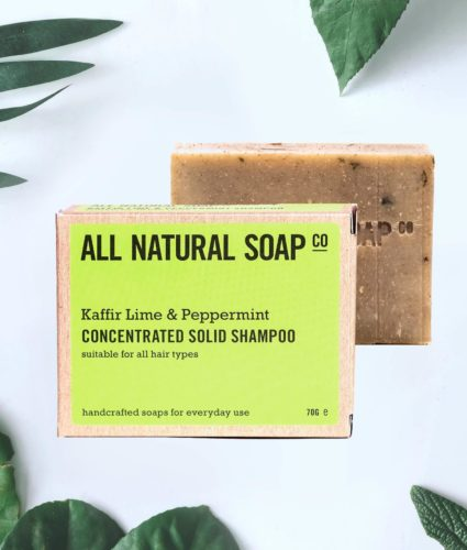 the-sustainable-box-shampoo